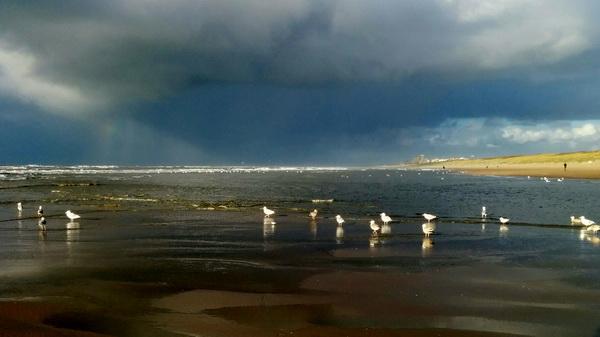 Wetter In Katwijk